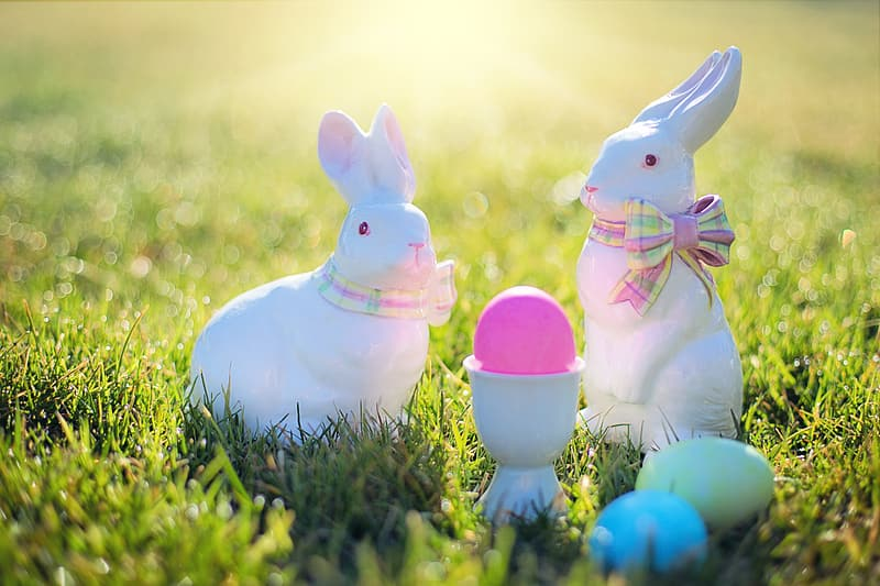 Two white rabbit ceramic figurines on green grass field during daytime