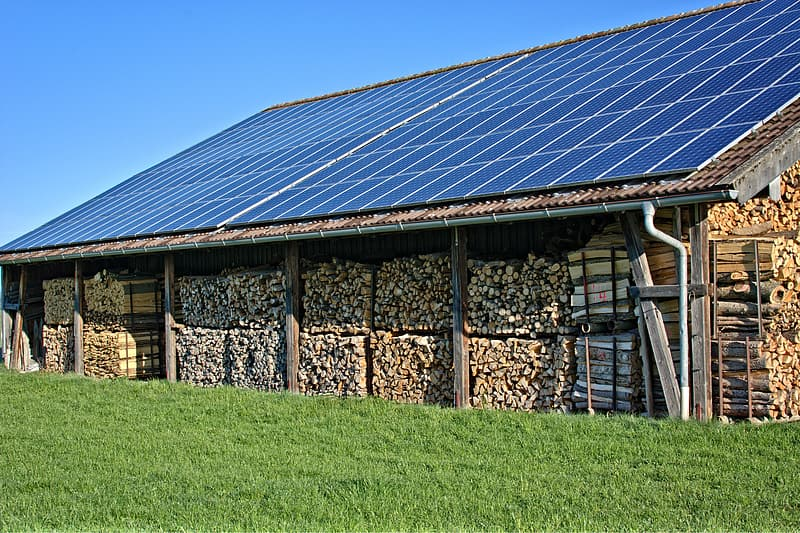 Pile of brown lumbers above row of solar water panels