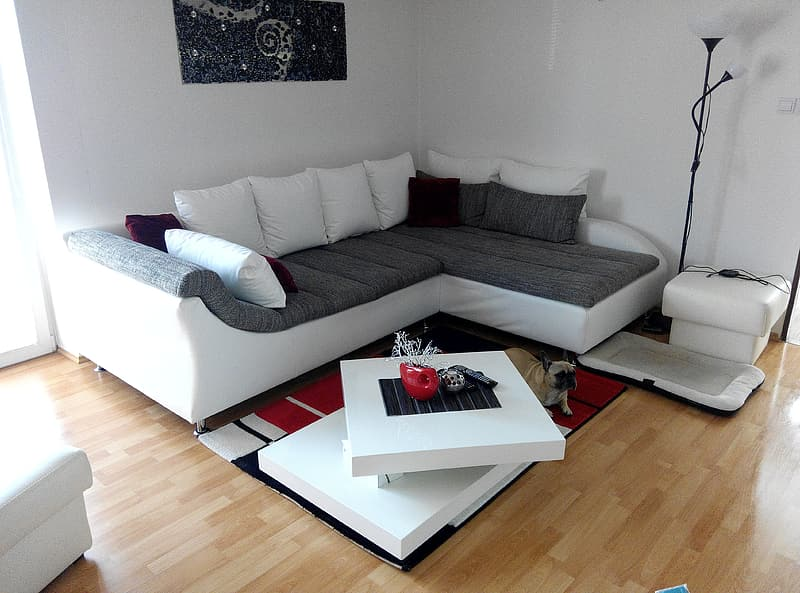 Vacant white and brown sectional sofa in the room