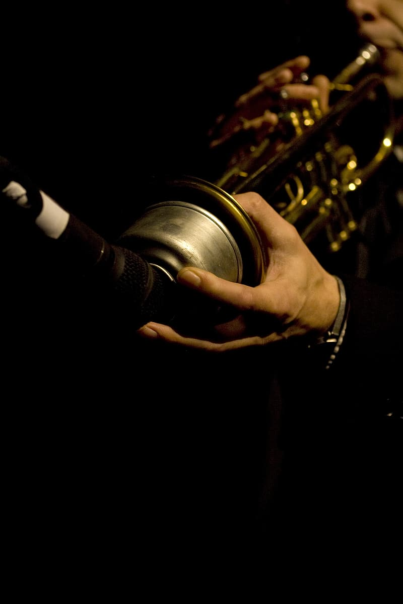 Person holding brass musical instrument