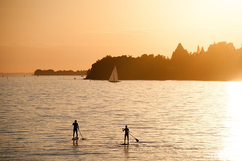 Silhouette photography of two surfers standing on surfboards