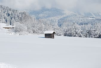 Photo of brown wooden house covered by snow during daytime
