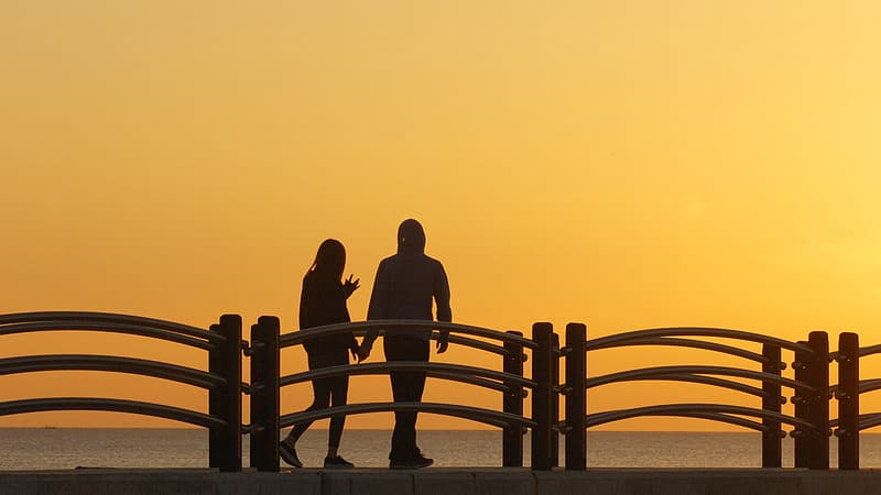 Silhouette of people standing on wooden fence during sunset