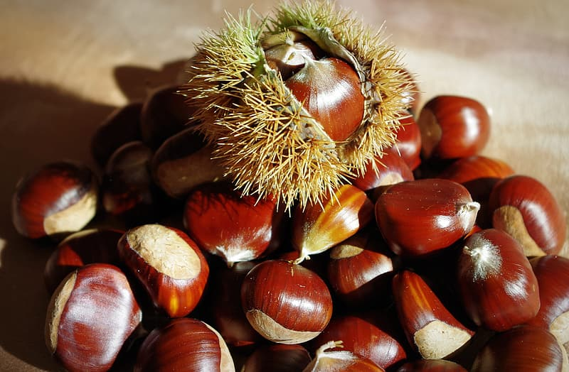 Brown and green round fruit