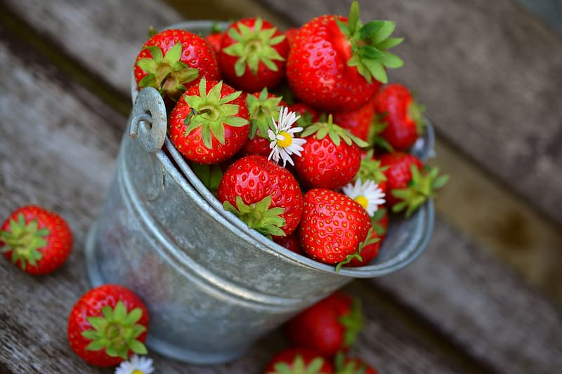Selective focus photography bucket of strawberries