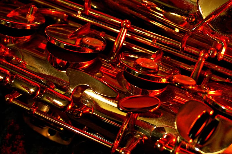 Closeup photography of wind instrument