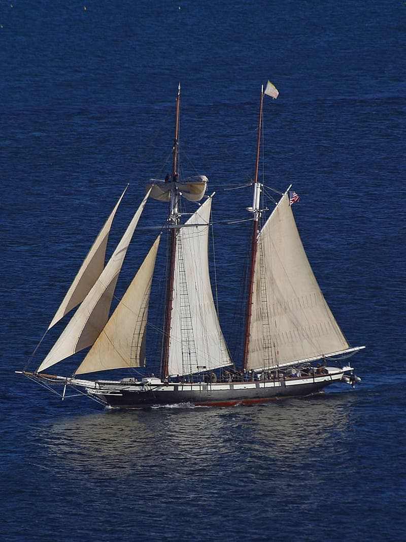 White and brown sail boat on blue sea during daytime