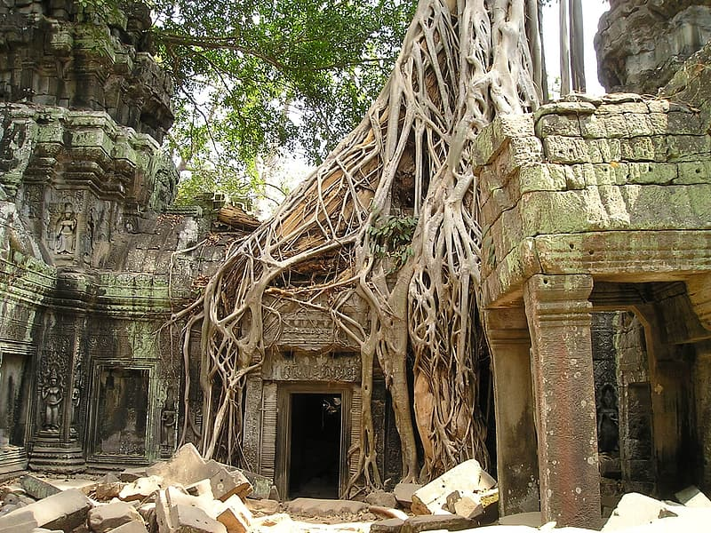 Green and brown tribe temple