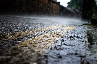 Selective focus and closeup photography of rain drops on gray paved road with yellow pedestrian lane