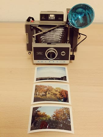 Grey folding camera in front of three photographs