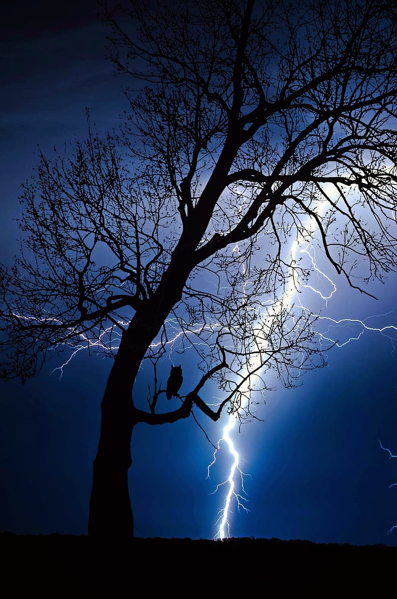 Black three with thunder background picture