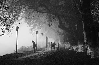 Grayscale photo of people walking on pathway