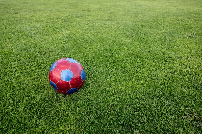 Red and blue soccer ball on green grass
