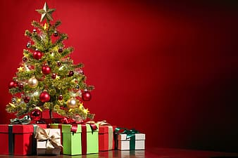 Green Christmas trees with assorted boxes