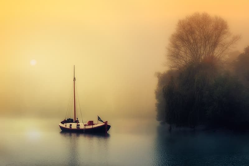 White and black sail boat on body of water near green trees