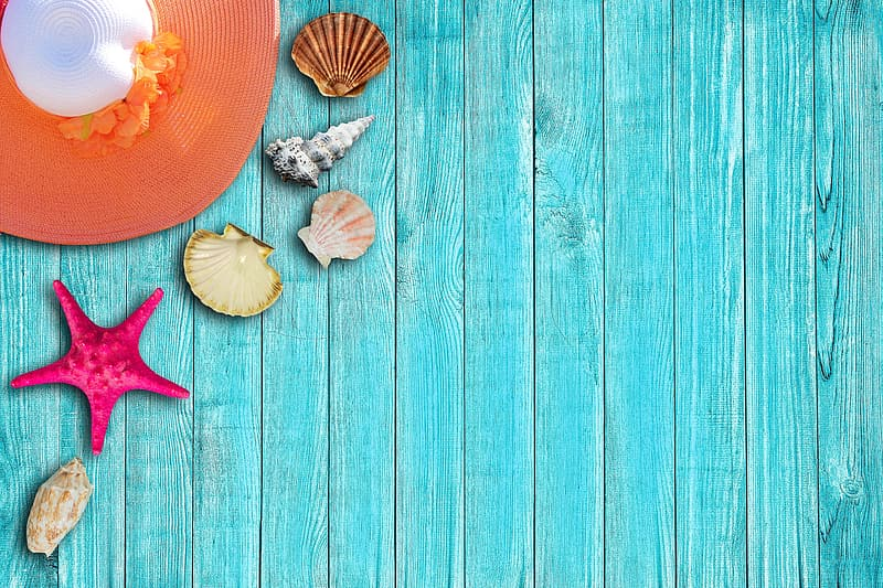 Close up photo of sea shells in teal wooden floor and brown and white sun hat