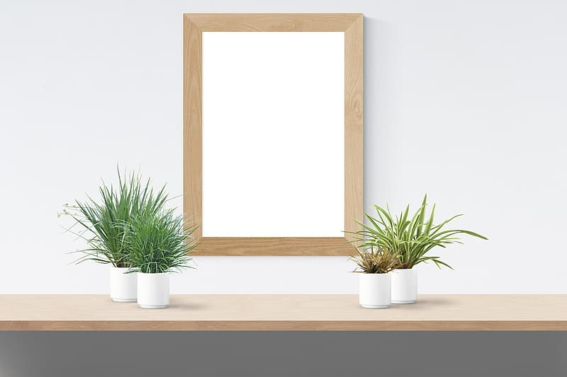 Rectangular brown wooden frame wall decor and spider plant
