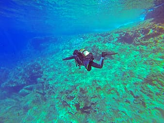 Photo of person in scuba diving
