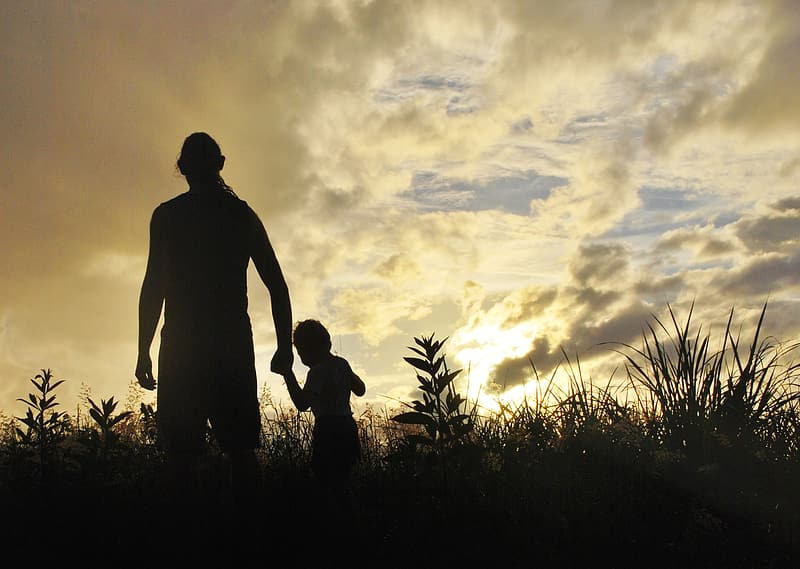 Silhouette of man and kid near grasses at sunrise