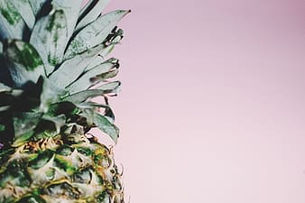 Pineapple side view photography