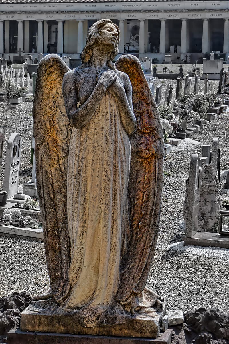 Photography of angel statue