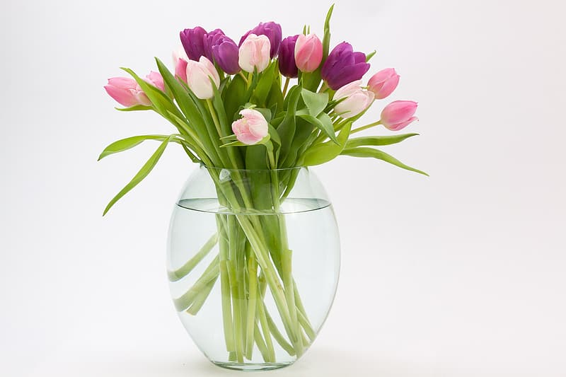 Purple and pink flowers inside glass vase with water