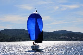 Blue and white sail boat sailing during daytime