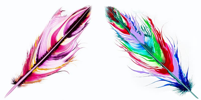 Red and white feather illustration