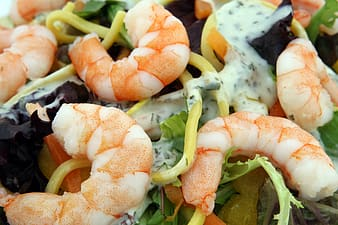 Closeup photo of pasta with cream and shrimps on top