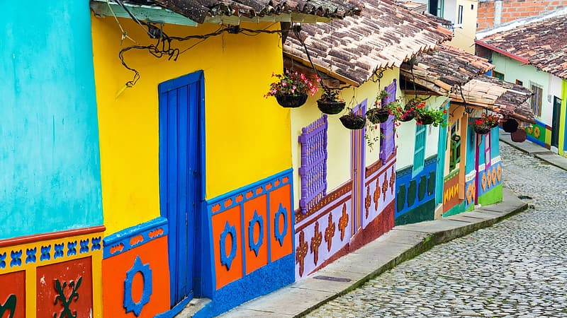 Multicolored painted wall houses