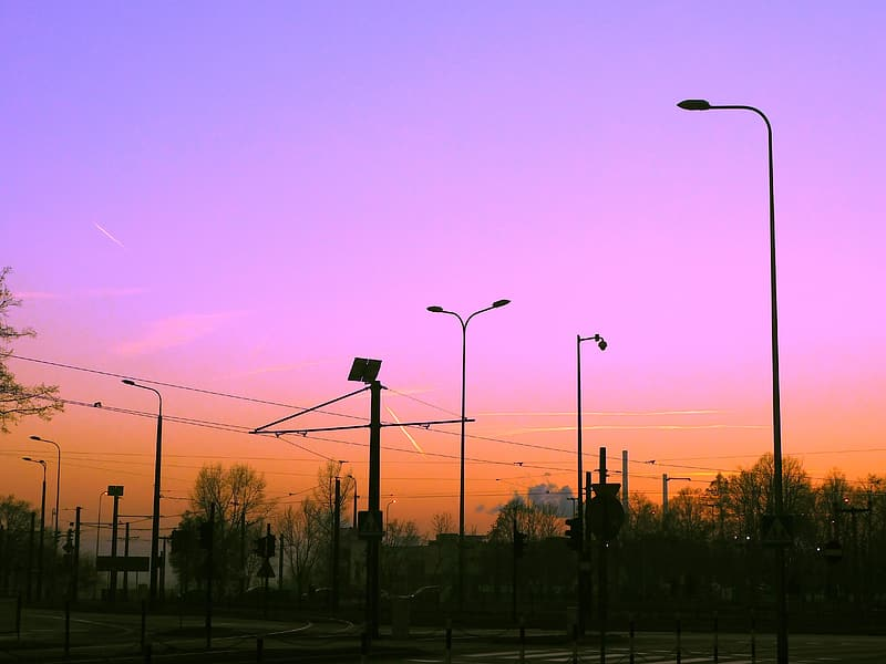 Silhouette photo of street lights
