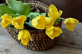 Yellow petaled flowers on brown wicker basket