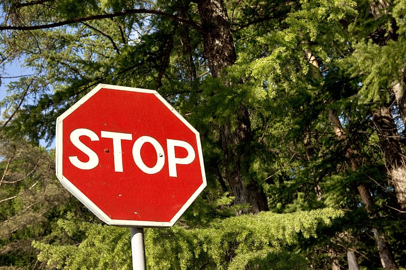 Stop sign near green trees during daytime