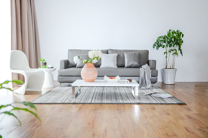 Grey sofa on living room