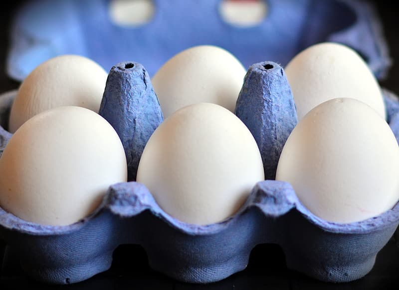 Close-up photo of six white egg on gray egg tray