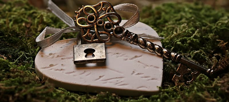 Heart-shaped brown wood with padlock on grass