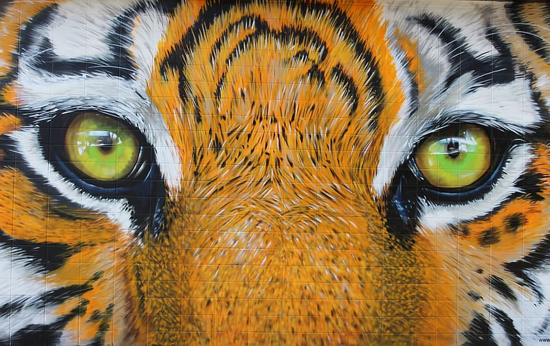 Close-up photo of tigers eye painting