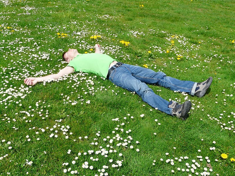 Man lying open arms on grass field with flowers