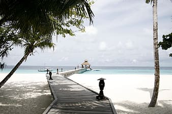 Grey wooden dock with canopy on sea during daytime