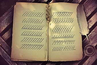 Book with cursive alphabet writing and quill