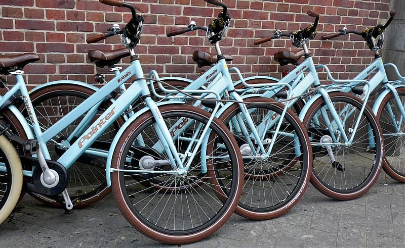 Teal Pointer bicycle standing near brick wall during daytime \