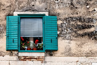 Blue wooden window with red flowers