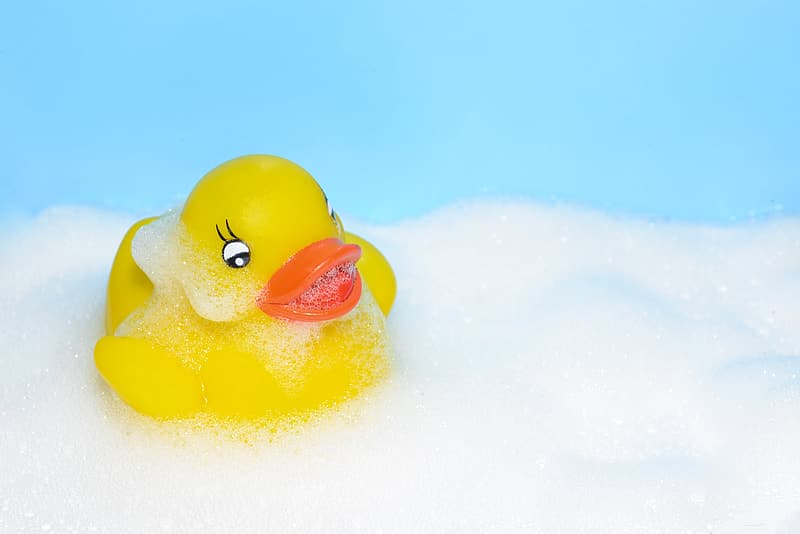 Yellow rubber duckling on white foam