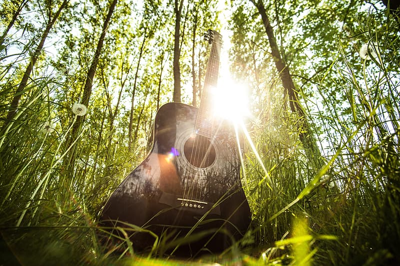 Black acoustic guitar on green grass field