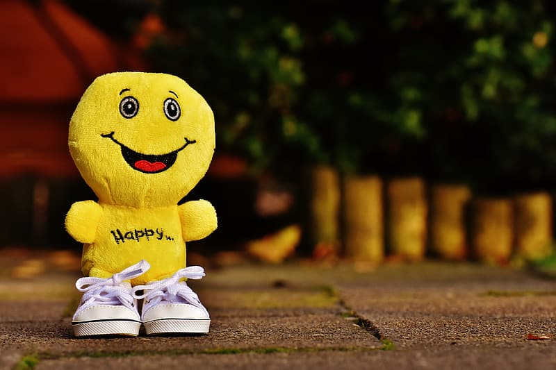 Yellow character plush toy and pair of white low-top shoes