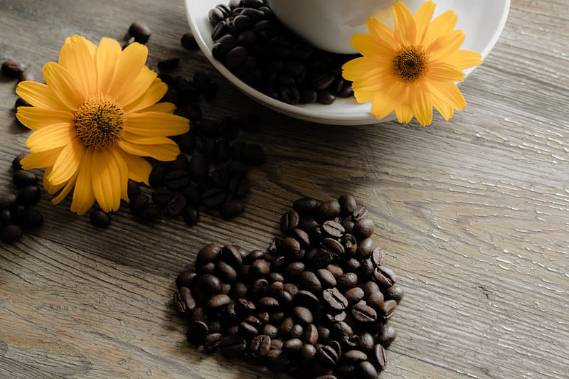 Yellow flower beside coffee beans