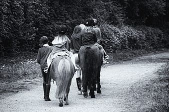 Grayscale photography of children riding on horse