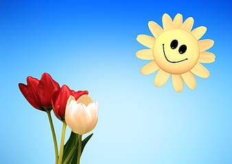 Red and white tulips and sun illustration