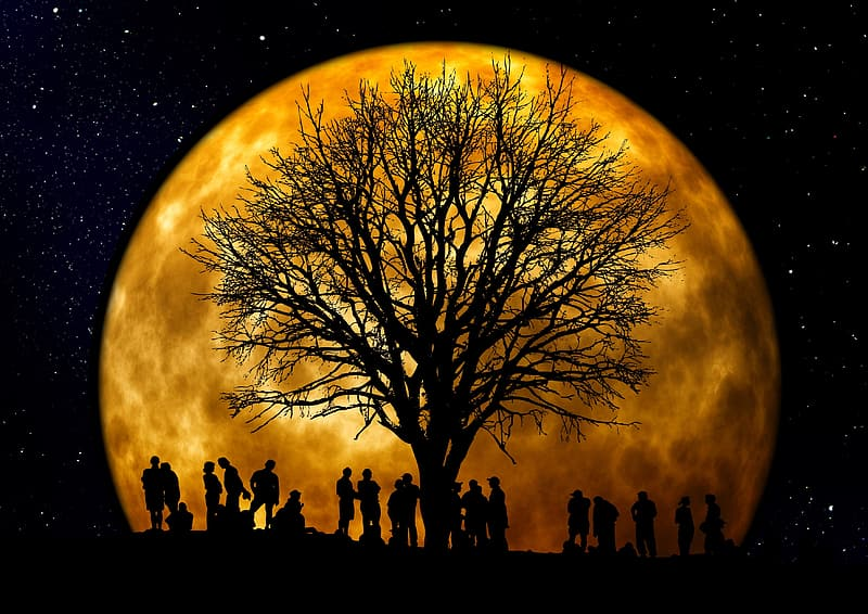 Silhouette of people under the bare tree with moon background