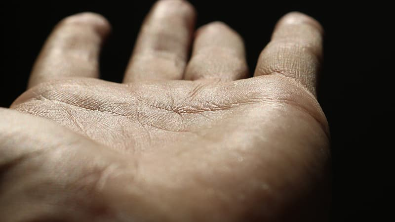 Person showing left human palm